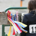 Horse Show Ribbons 3/12/2016