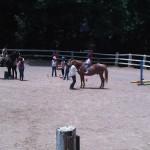 ridinglessons